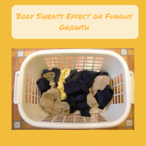 Body Sweats Effect on Fungus Growth