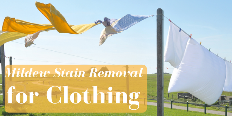 Mildew Stain Removal for Clothing