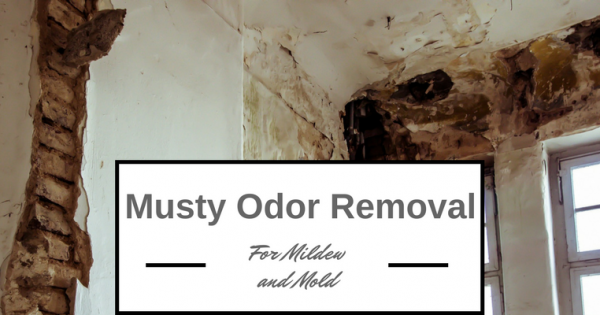 How To Get Mold Smell Out Of Clothes >> Best Musty Odor Removal Solutions for Mold and Mildew on ...