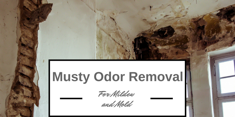 best musty odor removal solutions for mold and mildew on. Black Bedroom Furniture Sets. Home Design Ideas