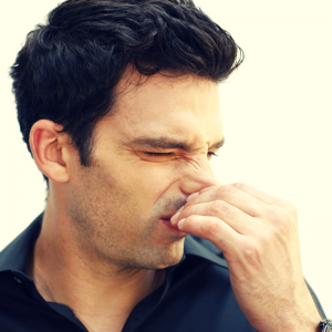 Musty Odor Removal