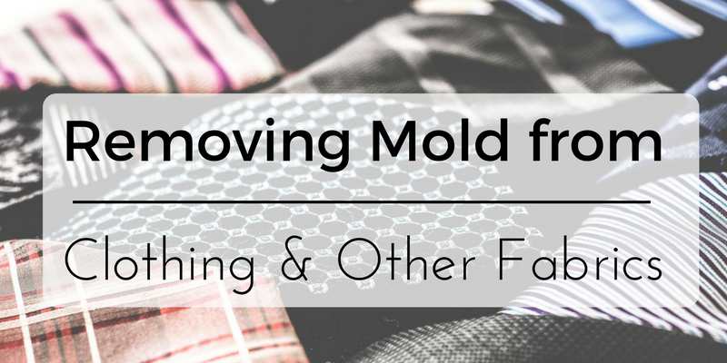 Removing Mold from Clothing and Other Fabrics