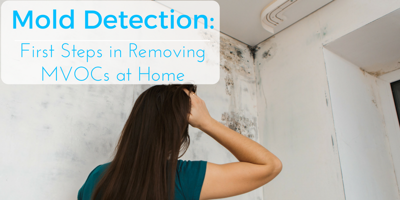 Mold Detection- First Steps in Removing MVOCs at Home