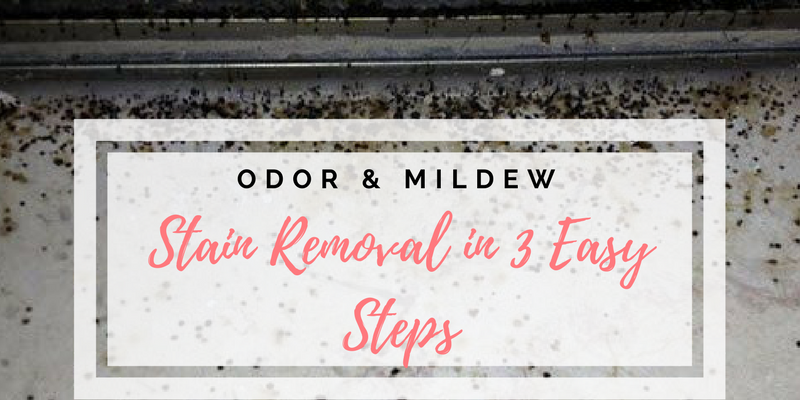 Odor & Mildew Stain Removal in 3 Easy Steps