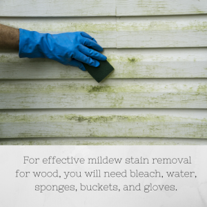 Mildew Stain Removal for Wood