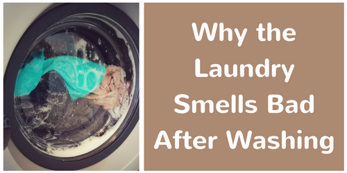 Why the Laundry Smells Bad After Washing